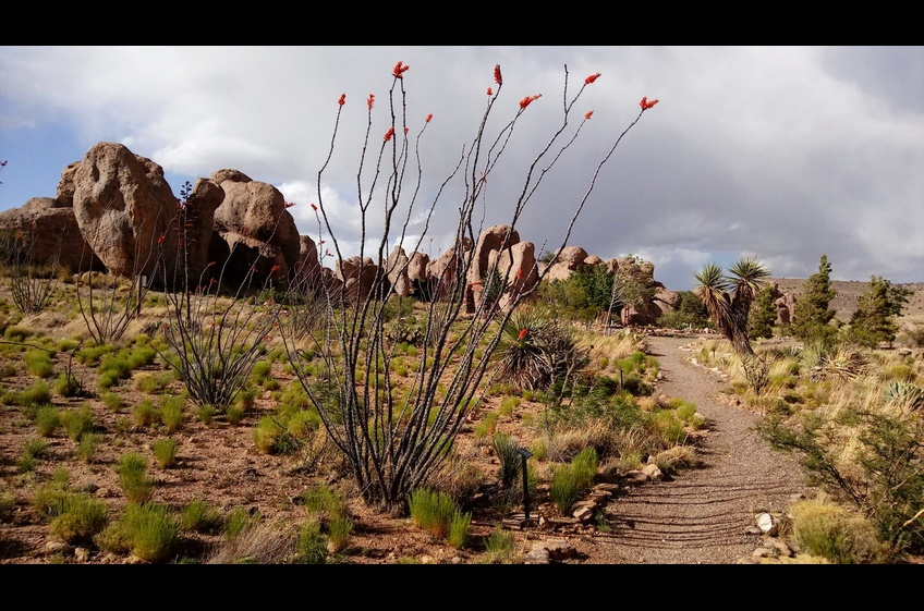 Hike Amazing City of Rocks Near New Mexico Cabin Rentals in Deming NM