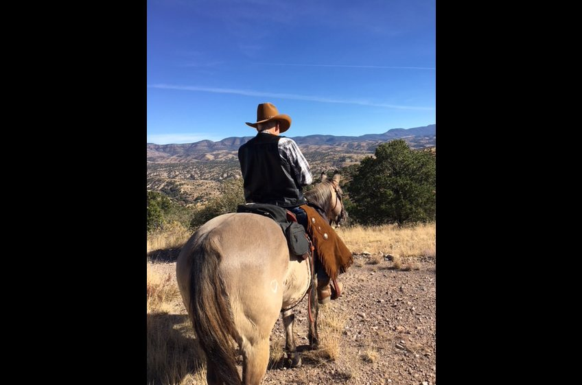 Bring your own horse and ride into the Gila National Forest