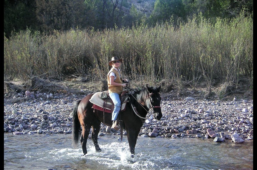 Challenging Terrain Make Horseback Rides Exciting at New Mexico Cabin Rentals