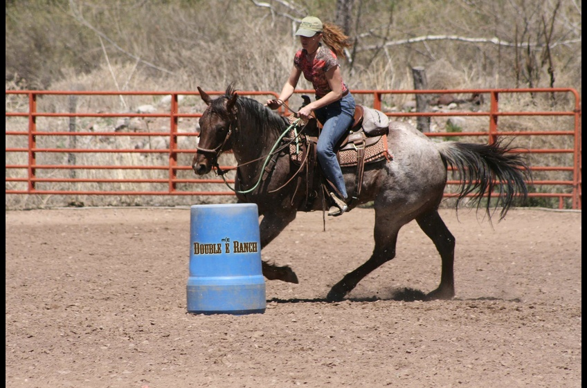 Barrel Racing in the Arena