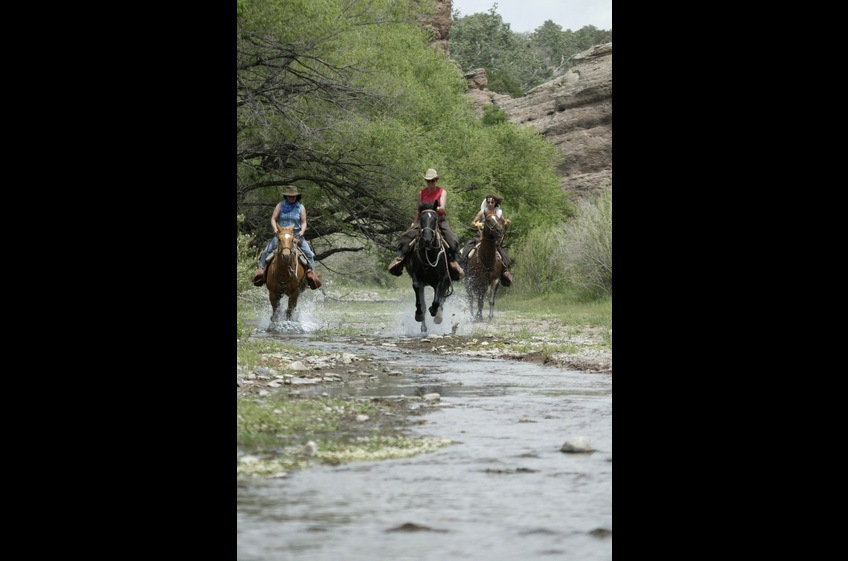 Bring Your Horse and Riding Buddies to New Mexico Cabin Rentals at Double E Ranch