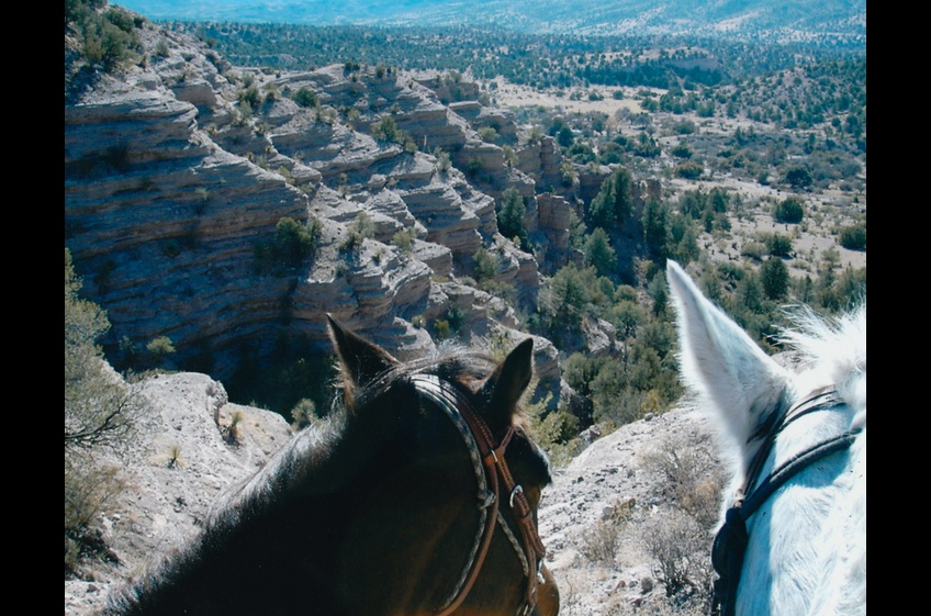 Horseback Riding is the Original 4-Wheel Drive at New Mexico Cabin Rentals