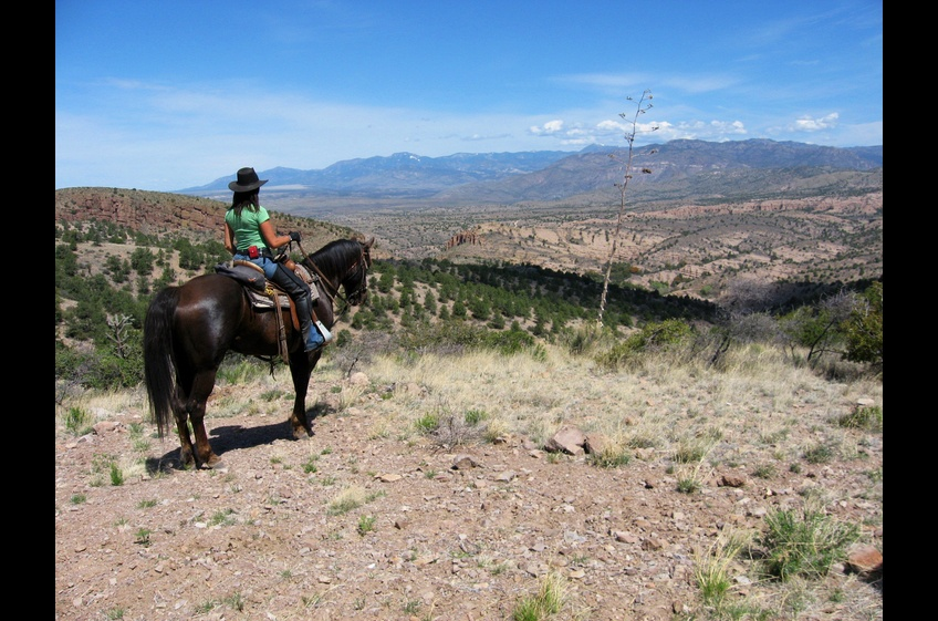 Horseback Riding is the Original 4-Wheel Drive and best way to Explore at New Mexico Cabin Rentals