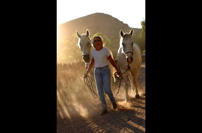 The finish of a perfect day of horseback riding at New Mexico Cabin Rentals