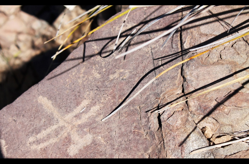 Dragonfly Loop Pictographs Near New Mexico Cabin Rentals