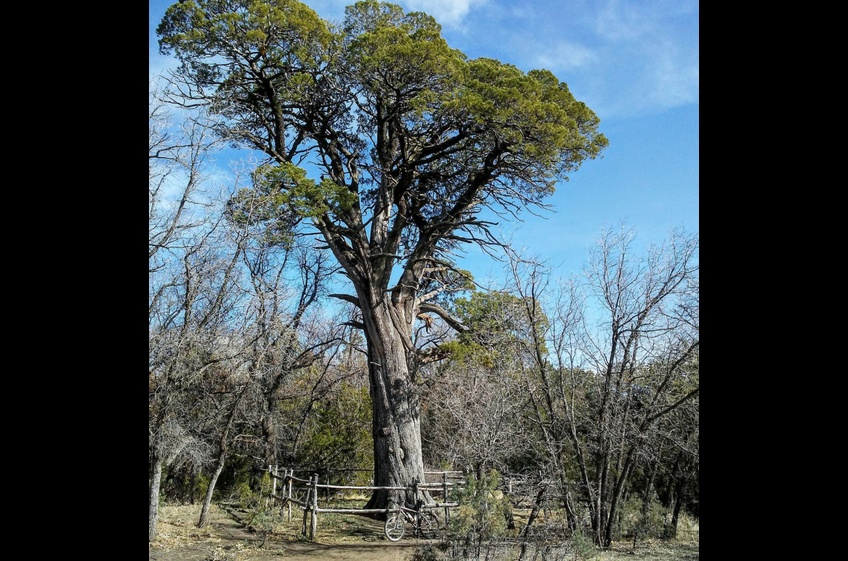 Fort Bayard Wildlife Refuge Hike Near New Mexico Cabin Rentals