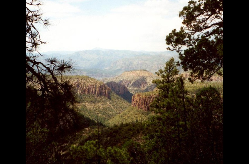 New Mexico Cabin Rentals and Double E Ranch Nestled on the Southwestern Edge of the Gila National Forest