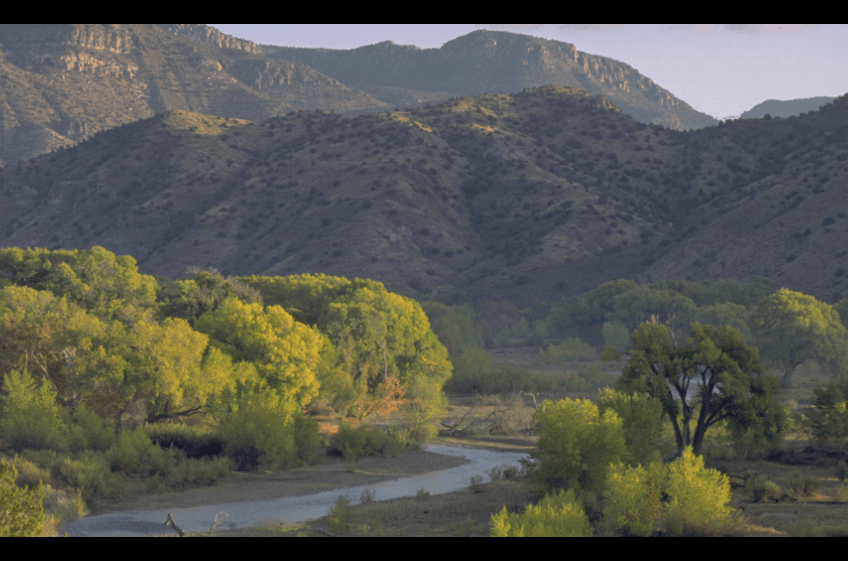 New Mexico's legendary Gila River separates the Village of Gila and Town of Cliff, NM where you can fish, hike, enjoy hot springs, birding and is 6 miles west of New Mexico Cabin Rentals and Double E Ranch.