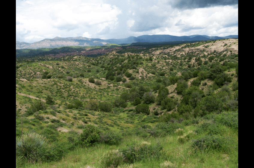 From the Double E Ranch Trail, you'll find miles of open country hiking