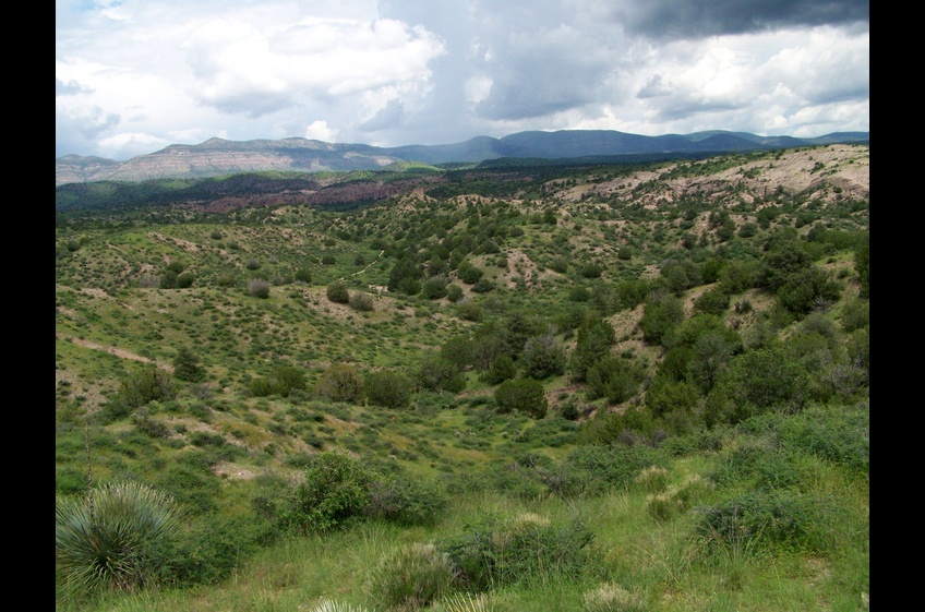 Hike the Double E Ranch Trail adjacent to Gila National Forest
